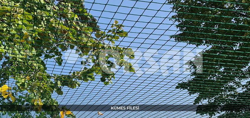 kumes-filesi-orsan-file